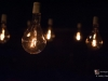 condemned-bulbs-6644